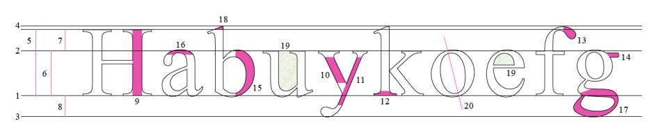 Anatomie_der_Buchstaben